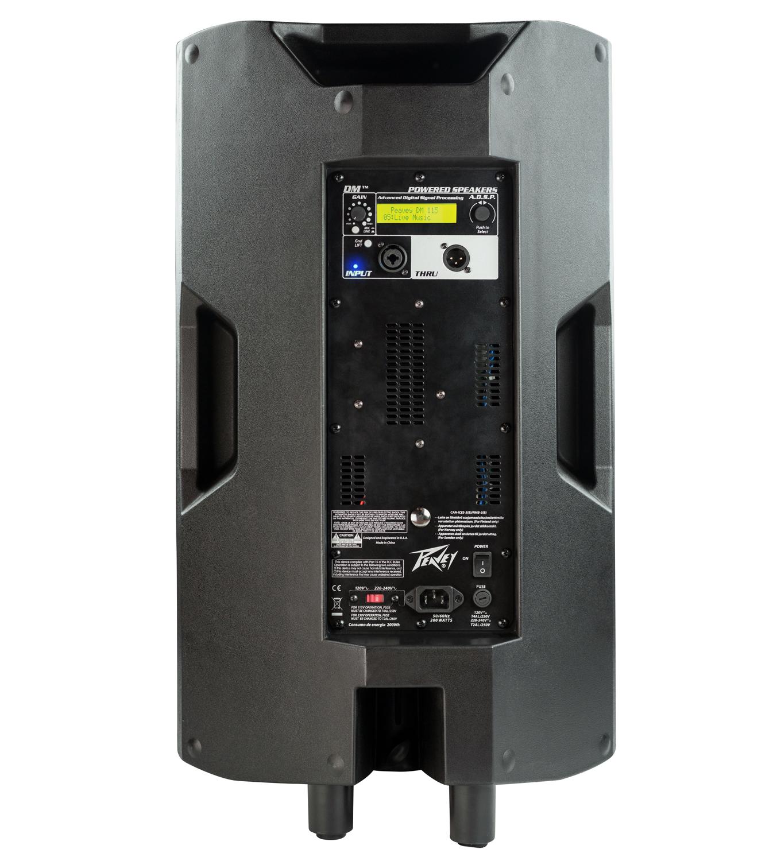 Dark Matter Dm 115 Precision Power Subwoofer Wiring Diagram