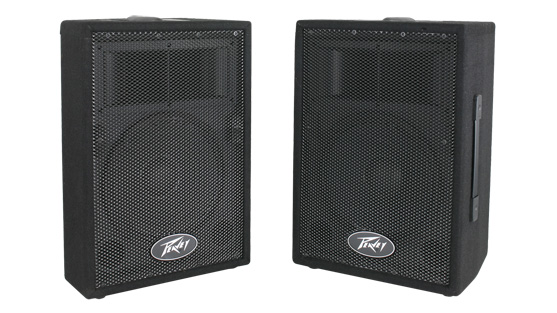 PVi™ 10 (Pair)  2-Way Speaker
