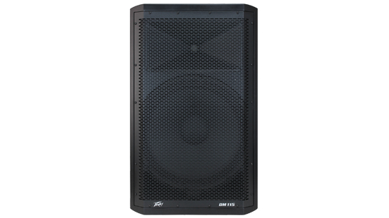 Dark Matter™ DM™ 115 Powered PA Loudspeaker