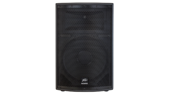 SP® 2 1000-Watt 2-Way PA Speaker