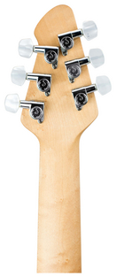 HP 2 ST Tiger Eye - Headstock Back